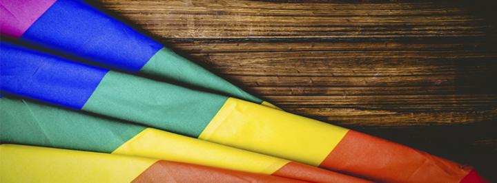 O TURISMO LGBT NO BRASIL